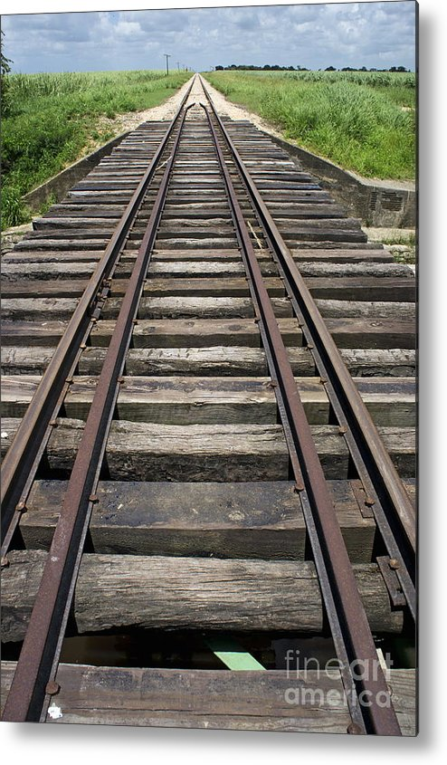 Nature Metal Print featuring the photograph Railroad Tracks by Sami Sarkis