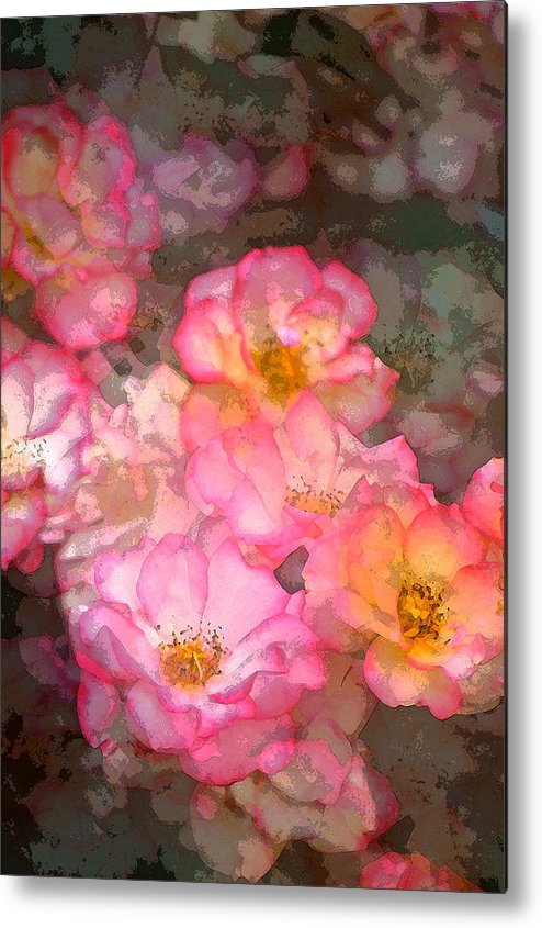 Floral Metal Print featuring the photograph Rose 210 by Pamela Cooper
