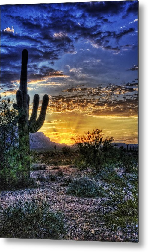 Sonoran Desert Metal Print featuring the photograph Sonoran Sunrise by Saija Lehtonen