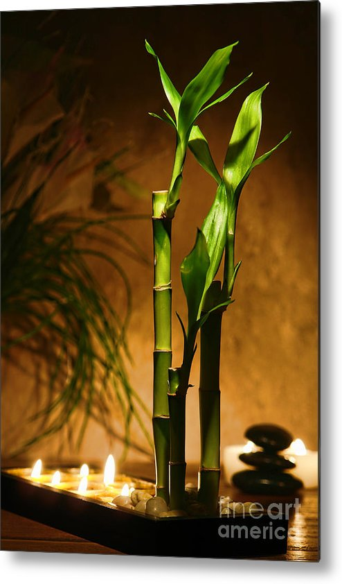 Bamboo Metal Print featuring the photograph Zen Time by Olivier Le Queinec