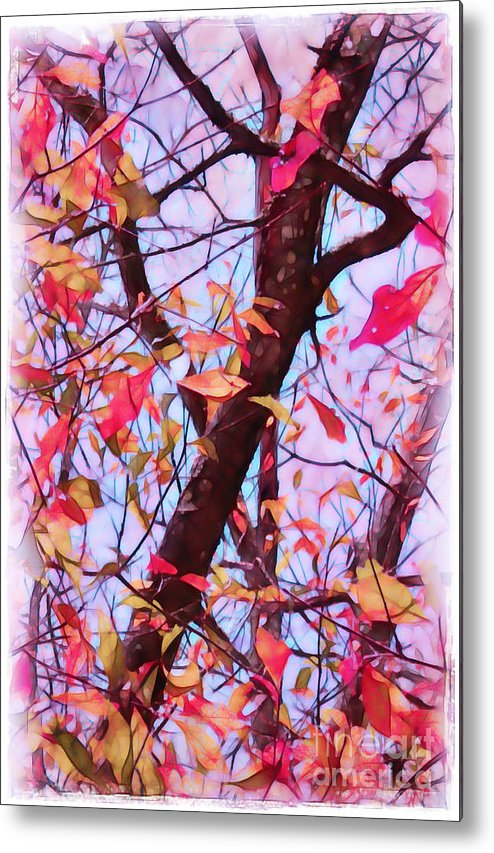 Fall Metal Print featuring the photograph Crisp Autumn Day by Judi Bagwell