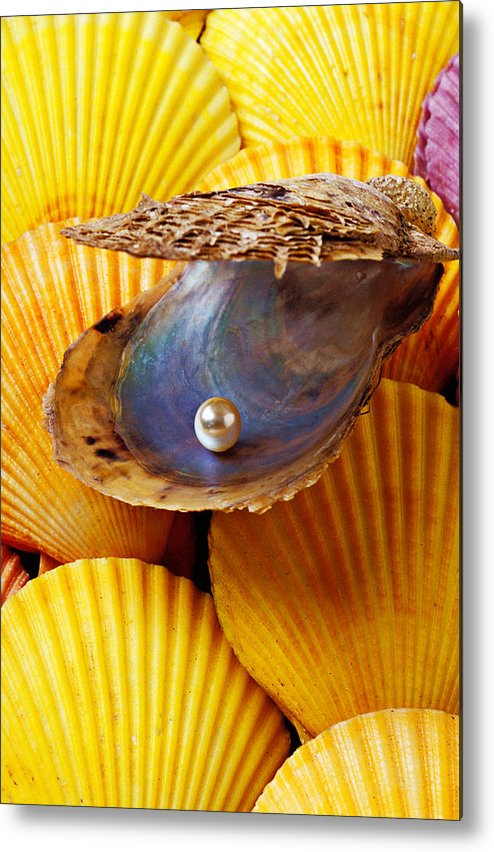 Pearl Metal Print featuring the photograph Pearl In Oyster Shell by Garry Gay