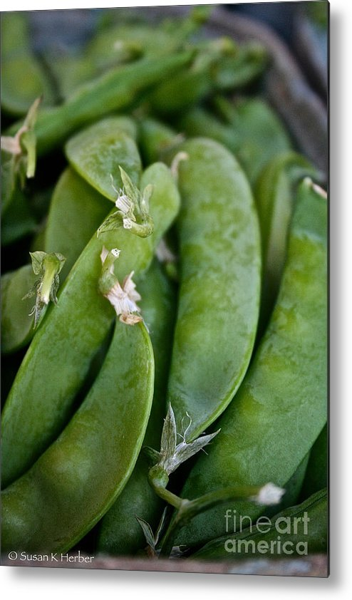 Food Metal Print featuring the photograph Snap Peas Please by Susan Herber