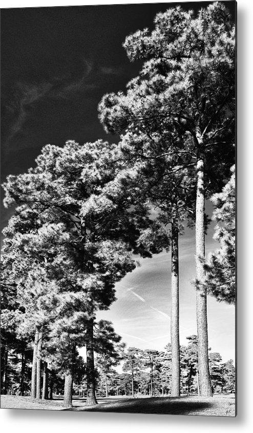 Nature Metal Print featuring the photograph Stillness by Gerlinde Keating - Galleria GK Keating Associates Inc