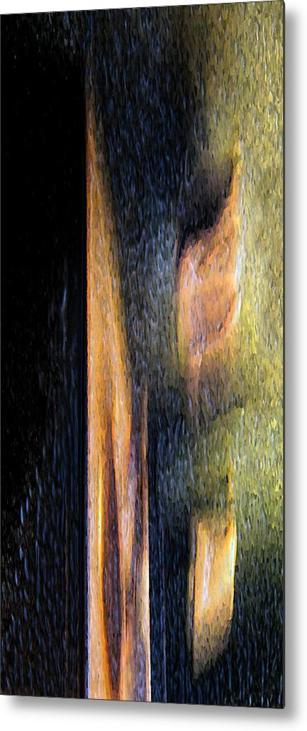 Abstract Metal Print featuring the photograph Form And Shadow by Murray Bloom