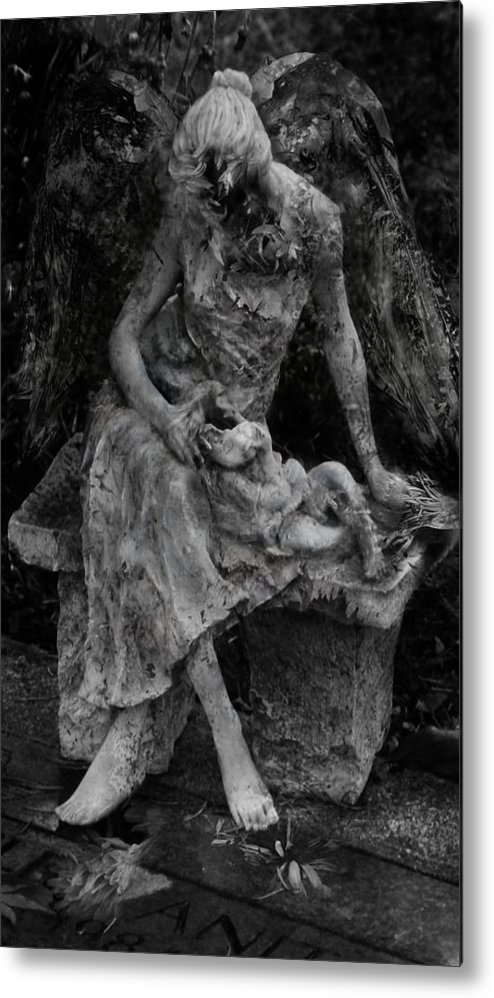 Photography Metal Print featuring the photograph Miseries by David Fox