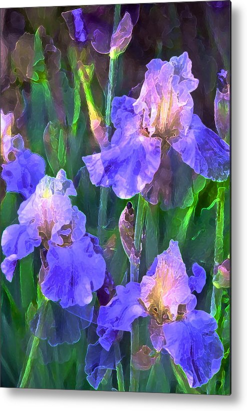 Floral Metal Print featuring the photograph Iris 51 by Pamela Cooper