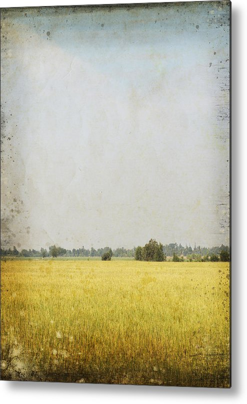 Abstract Metal Print featuring the photograph Nature Painting On Old Grunge Paper by Setsiri Silapasuwanchai