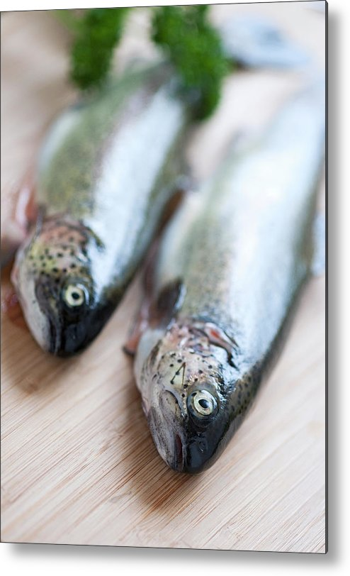Vertical Metal Print featuring the photograph Trouts by Carlo A