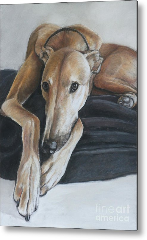 Dog Metal Print featuring the painting Bauregard by Charlotte Yealey