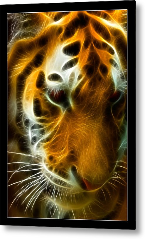 Bengal Metal Print featuring the photograph Turbulent Tiger by Ricky Barnard