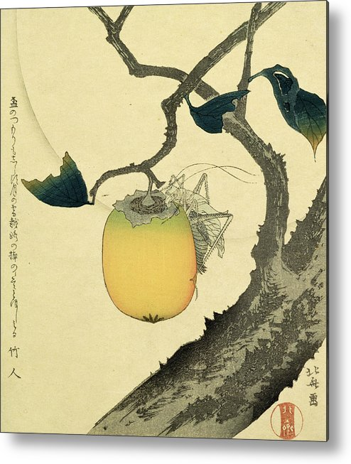 Japanese Metal Print featuring the drawing Moon Persimmon And Grasshopper by Katsushika Hokusai