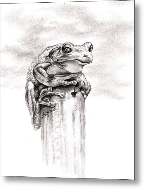 Frog Metal Print featuring the drawing Batting Coach by Kathleen Kelly Thompson