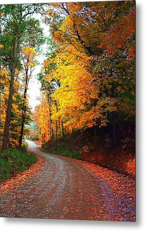 Country Metal Print featuring the photograph Country Autumn Gravel Road by Julie Dant