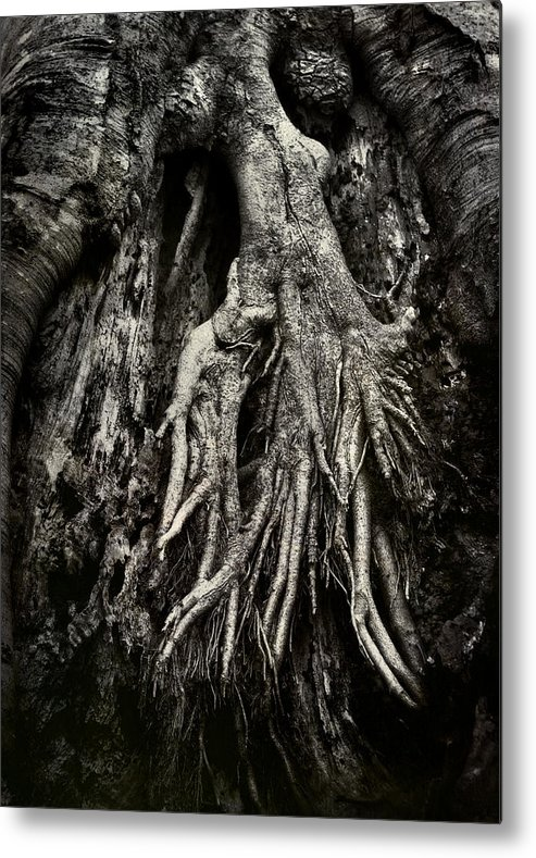 Tree Metal Print featuring the photograph Kneeling At The Feet Of The Green Man by Rebecca Sherman