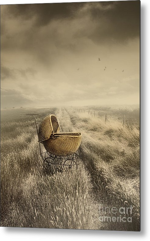 Abandoned Metal Print featuring the photograph Abandoned Antique Baby Carriage In Field by Sandra Cunningham