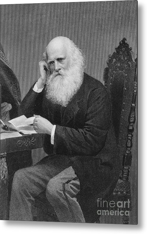 19th Century Metal Print featuring the photograph William Cullen Bryant by Granger