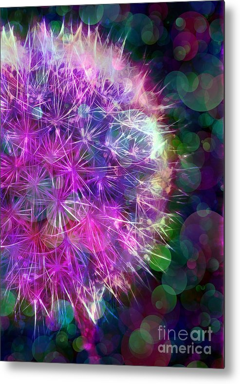 Dandelion Metal Print featuring the photograph Dandelion Party by Judi Bagwell