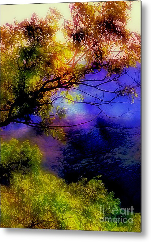 Arkansas Metal Print featuring the photograph That Mountain Light by Judi Bagwell