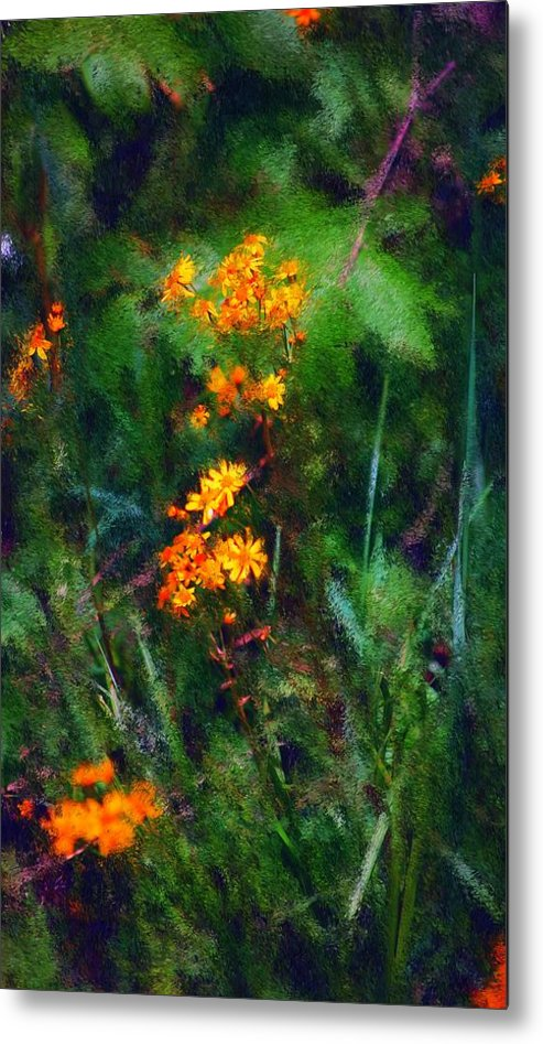 Digital Photography Metal Print featuring the digital art Flowers In The Woods At The Haciendia by David Lane