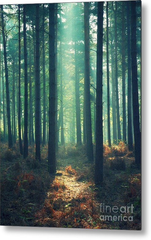 Rayon Vert Metal Print featuring the photograph The Green Ray by Paul Grand