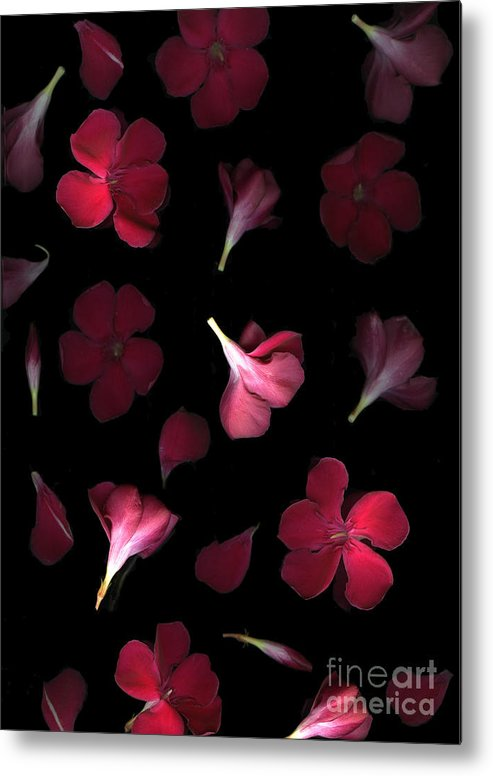 Cslanec Metal Print featuring the photograph Spring by Christian Slanec