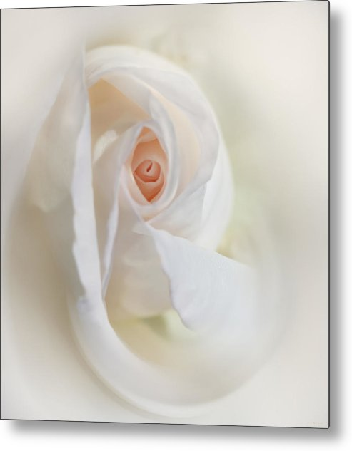 Rose Metal Print featuring the photograph Abstract Pastel Rose Flower by Jennie Marie Schell