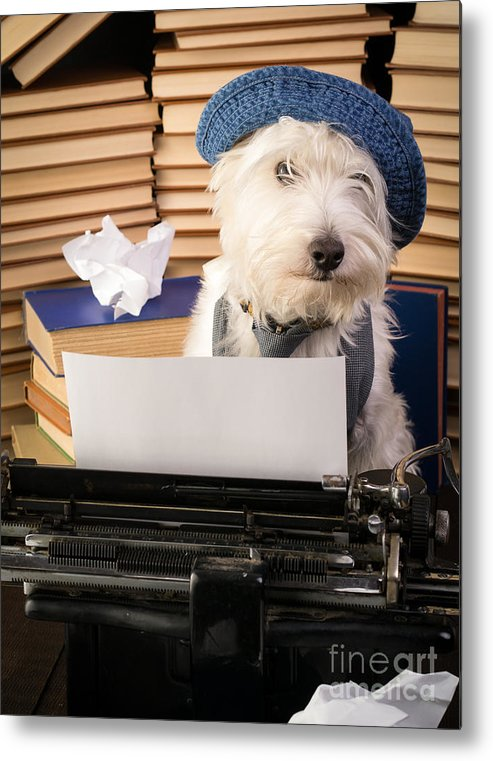 Dog Metal Print featuring the photograph Writer's Block by Edward Fielding