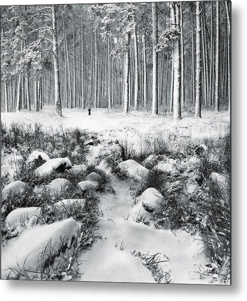 Landscape Metal Print featuring the photograph Winter Is Here by Vladimir Kholostykh
