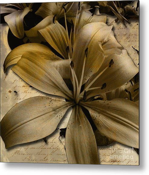 Metal Print featuring the mixed media Bei by Yanni Theodorou