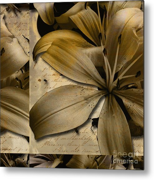 Metal Print featuring the mixed media Bliss II by Yanni Theodorou