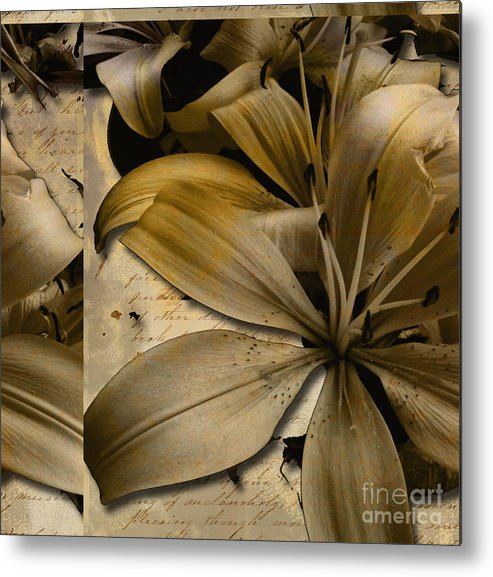 Metal Print featuring the mixed media Bliss IIi by Yanni Theodorou