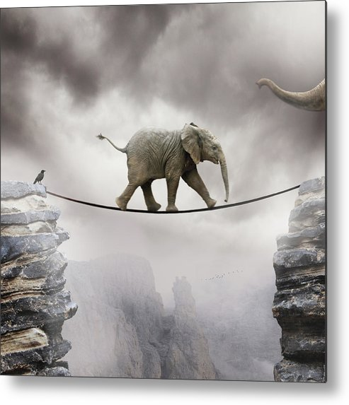 Vertical Metal Print featuring the photograph Baby Elephant by by Sigi Kolbe