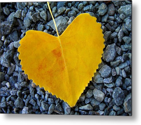 Love Metal Print featuring the photograph In Love ... by Juergen Weiss