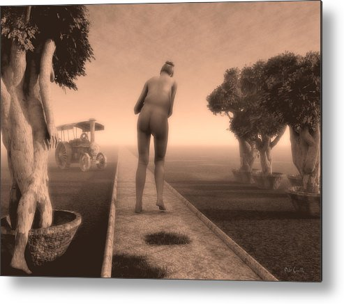 Life Metal Print featuring the photograph Path In Life by Bob Orsillo