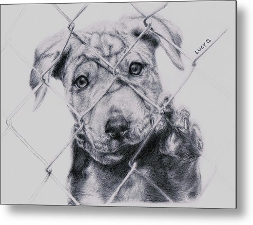 Animals Metal Print featuring the drawing Save Me by Lucy D