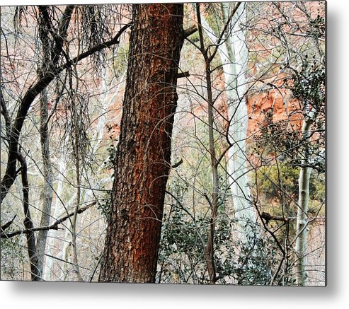 Red Metal Print featuring the photograph Sedona Layers by Todd Sherlock