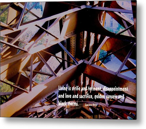 Life Metal Print featuring the photograph Life Is Strife by Ian MacDonald