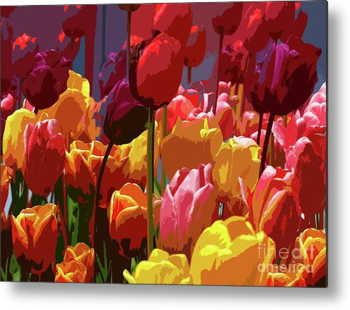 Tulips Metal Print featuring the photograph Tulip Confusion by Sharon Talson