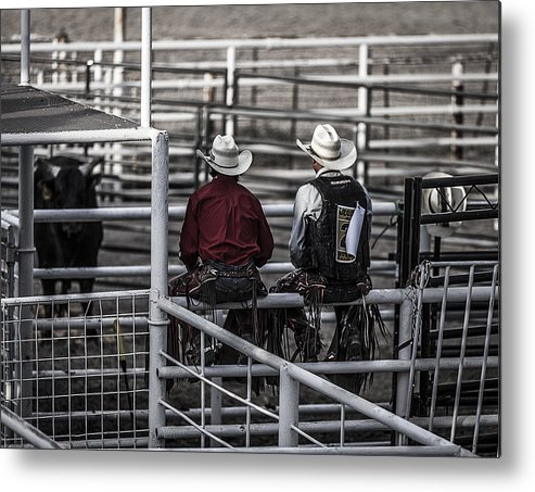 Landscapes Metal Print featuring the photograph The Stare-off Begins by Amber Kresge