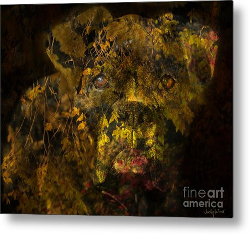 Boxer Dog Metal Print featuring the digital art Fall Boxer by Judy Wood