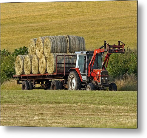 Hay Metal Print featuring the photograph Make Hay When Sun Shines by Paul Scoullar