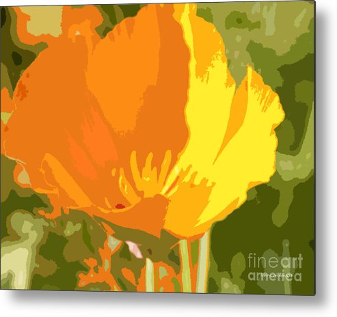 Bstract California Poppies Photographs Metal Print featuring the photograph Retro Abstract Poppies 2 by Artist and Photographer Laura Wrede