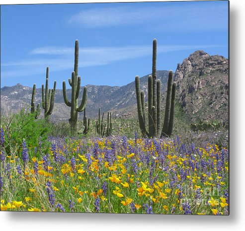 Desert Metal Print featuring the photograph Spring Flowers In The Desert by Elvira Butler