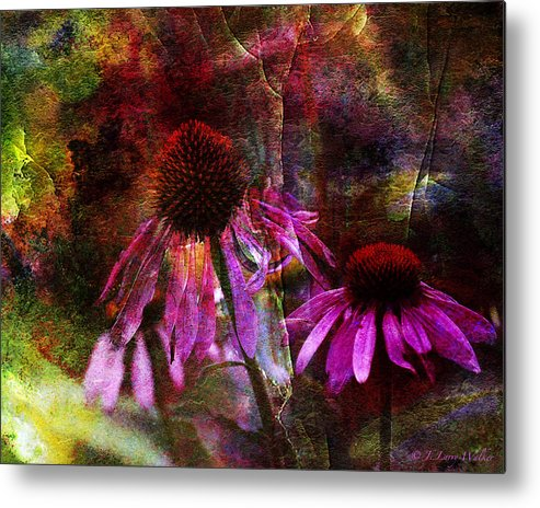 J Larry Walker Metal Print featuring the photograph Cone Flower Beauties by J Larry Walker