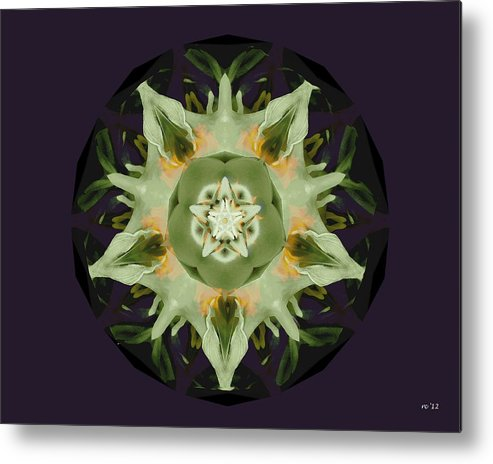 Abstract Metal Print featuring the photograph Leafy Mandala by Rene Crystal