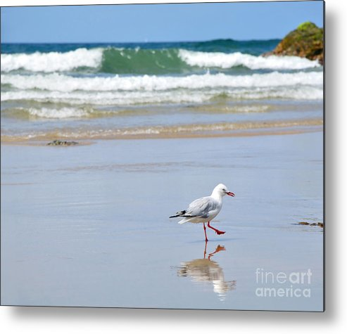 Photography Metal Print featuring the photograph Dancing On The Beach by Kaye Menner