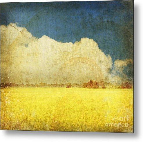 Abstract Metal Print featuring the photograph Yellow Field by Setsiri Silapasuwanchai