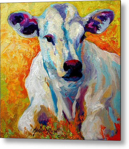 Western Metal Print featuring the painting White Calf by Marion Rose