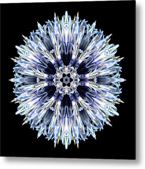Flower Metal Print featuring the photograph Blue Globe Thistle Flower Mandala by David J Bookbinder